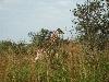 Lea in Uganda (12)